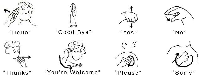 baby sign language dictionary pdf