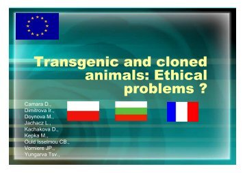 ethical issues of animal cloning pdf