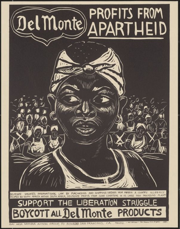 liberation movements in africa pdf