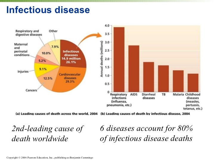mathematical modelling of infectious diseases pdf