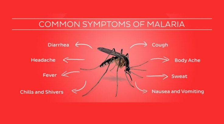 malaria symptoms and treatment pdf