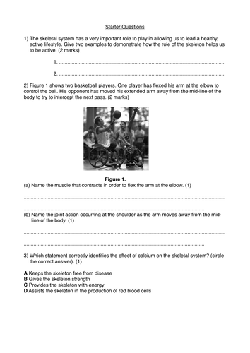 system administrator test questions answers pdf