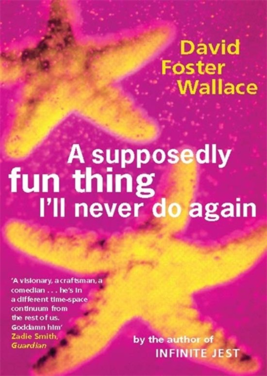 a supposedly fun thing david foster wallace pdf