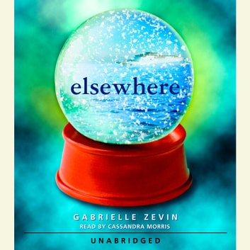 elsewhere by gabrielle zevin pdf download