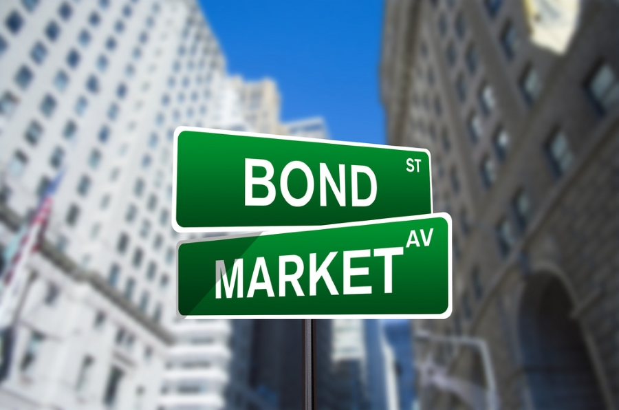 how the bond market works pdf