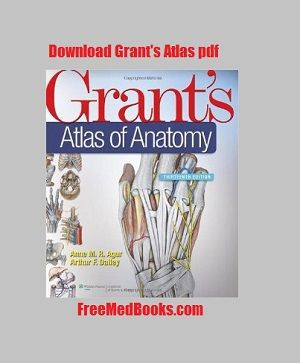 human anatomy atlas free download pdf