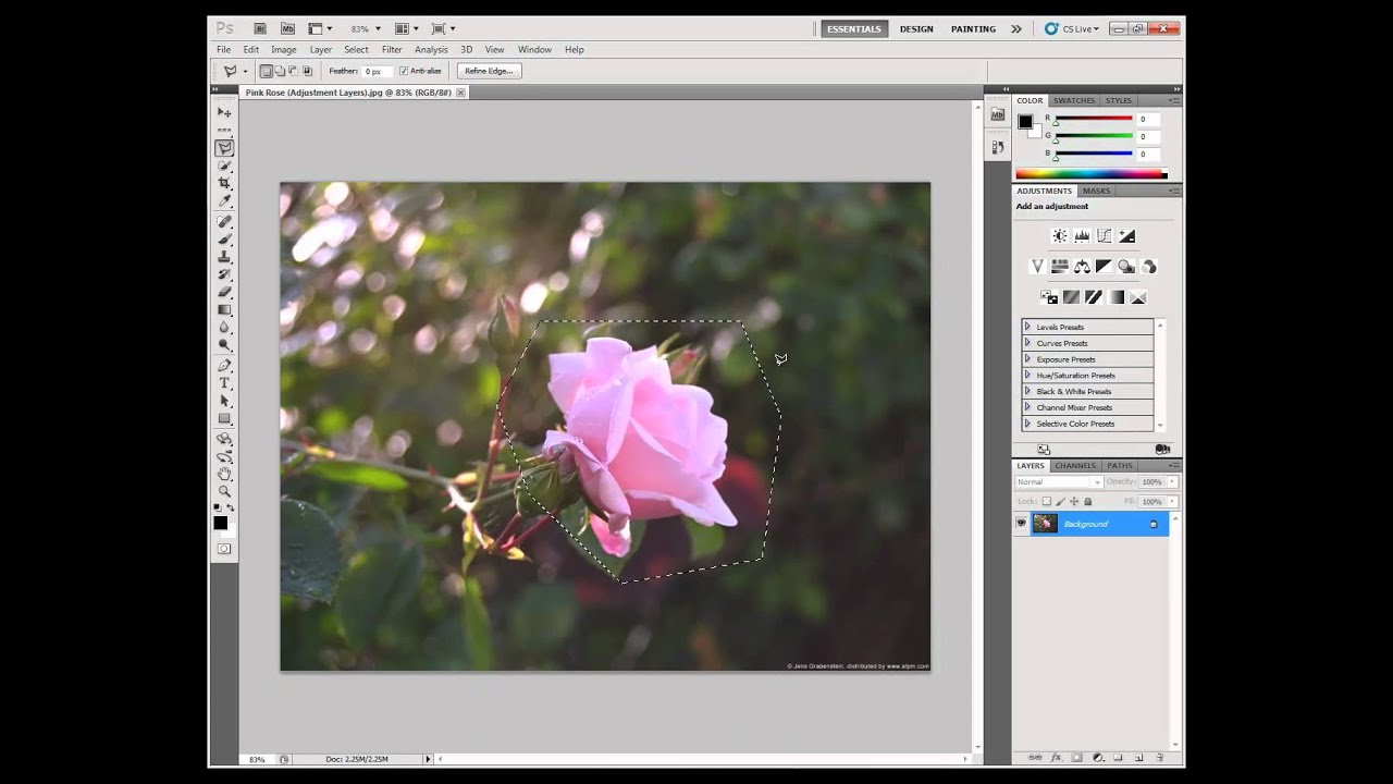 selection tools in photoshop pdf