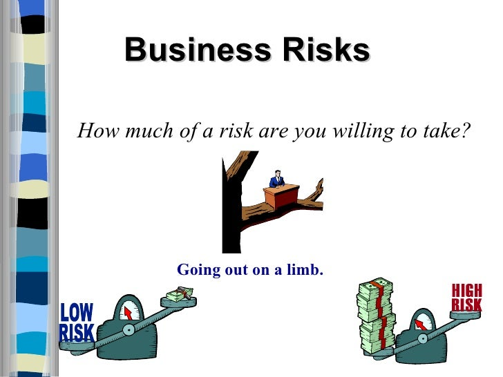 what is business risk pdf