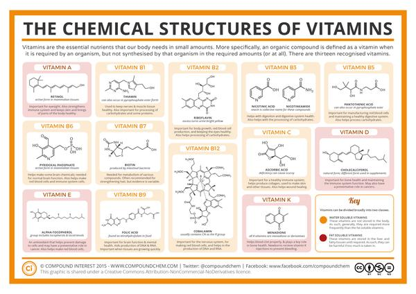 what vitamins should i be taking pdf